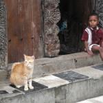 A boy's best friend Zanzibar