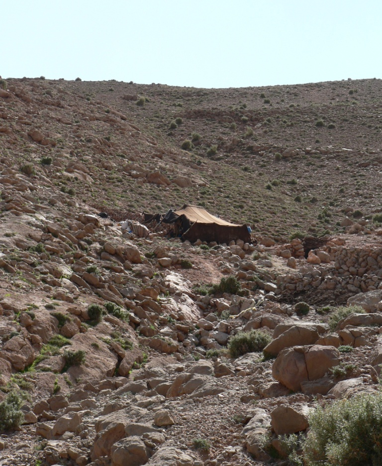 Berber tent hiking Todra Gorge