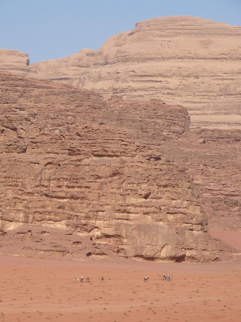 Camel caravan Wadi Rum desert