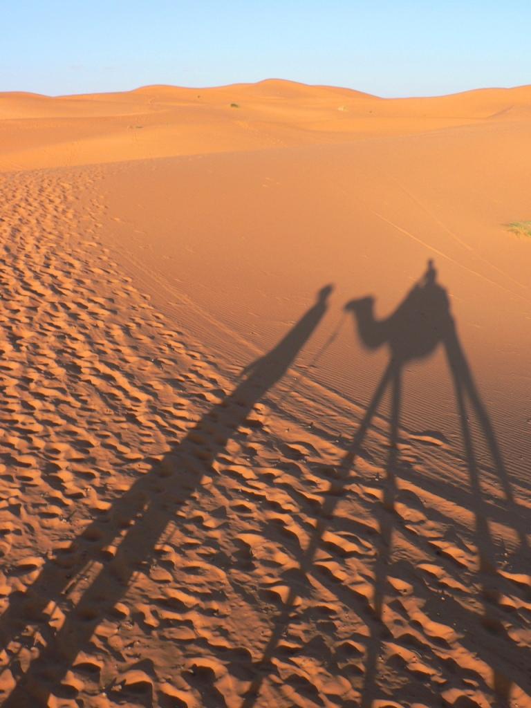 Camel ride Erg Chebbi dunes