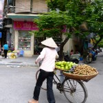 Fruit seller Hanoi