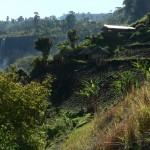 Local village Sipi Falls Uganda