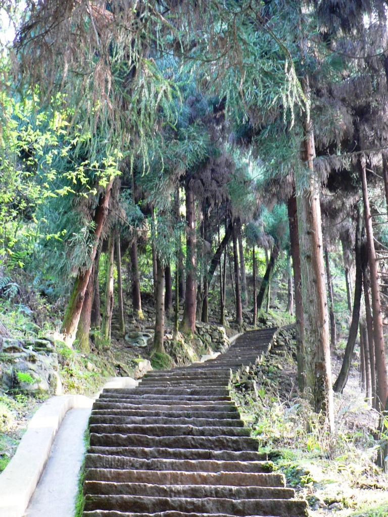 Mt Emei trail