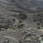Mt Kili trail Day 4