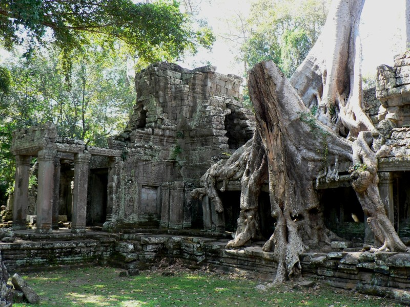Reclaimed Preah Khan