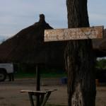 Serengeti camping