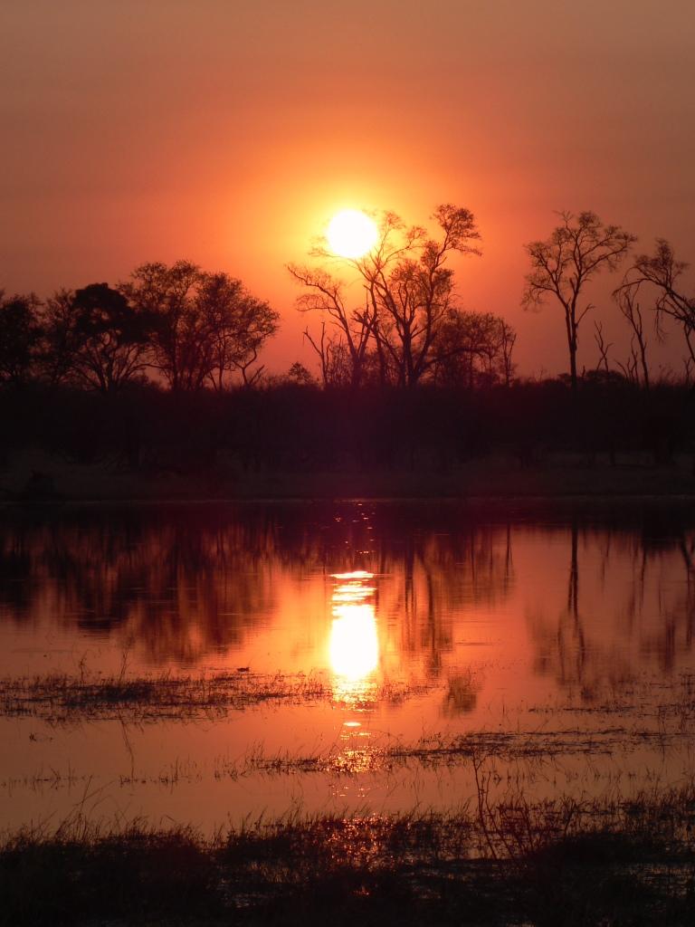Sunset The Delta