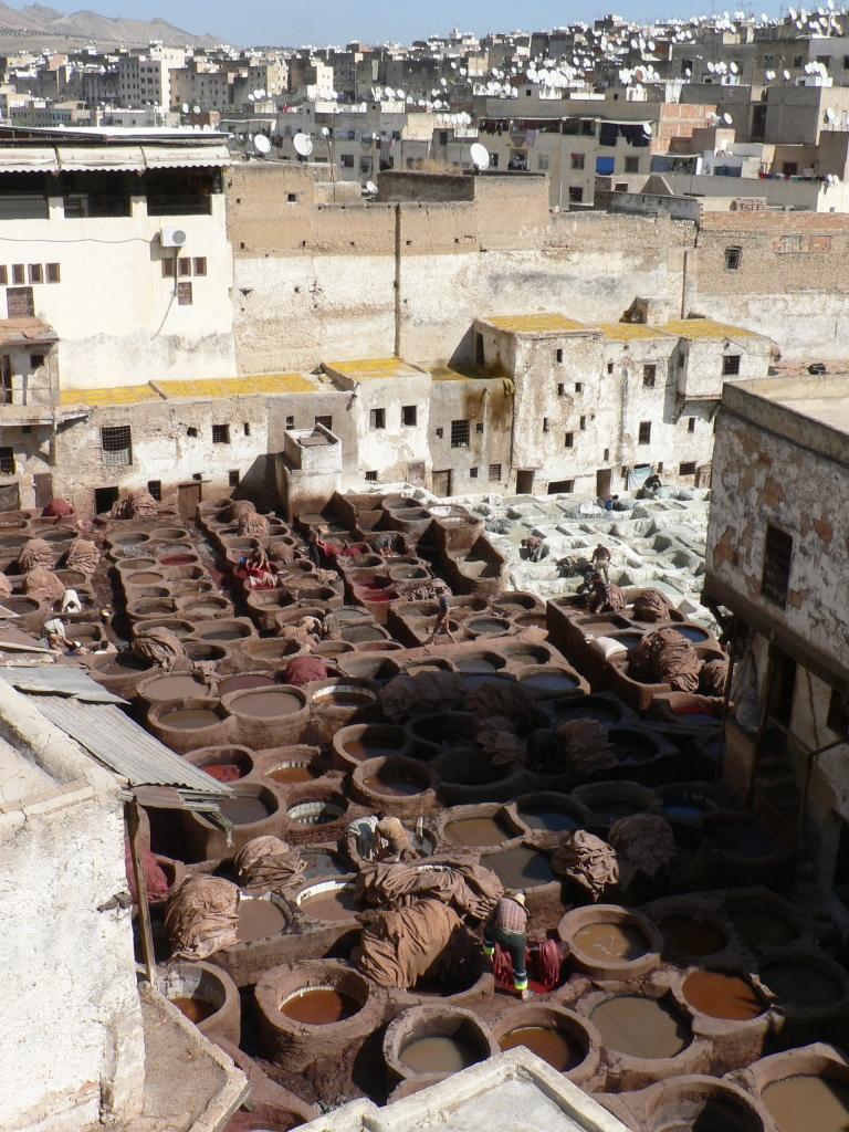 Tannery vats Fez