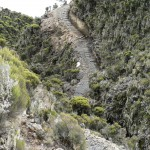 Trail Mt Meru