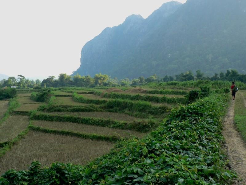 Trekking Laos