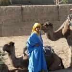 Tuareg camel driver