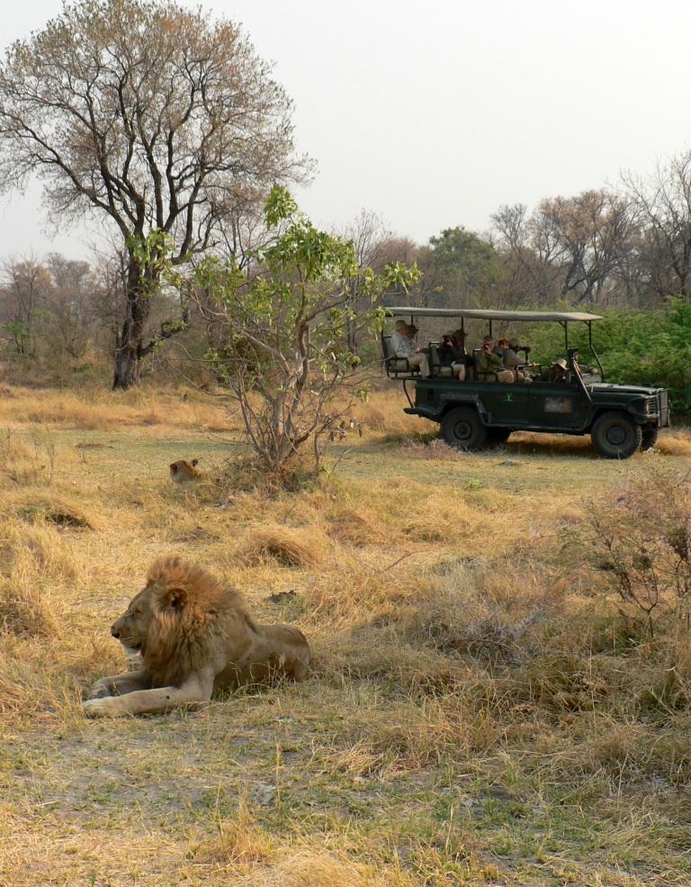 tinned food on Safari