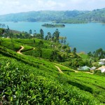 Tea estates and lakes