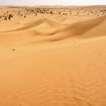 Empty quarter desert Southern Oman-