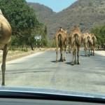 Traffic jam Oman-