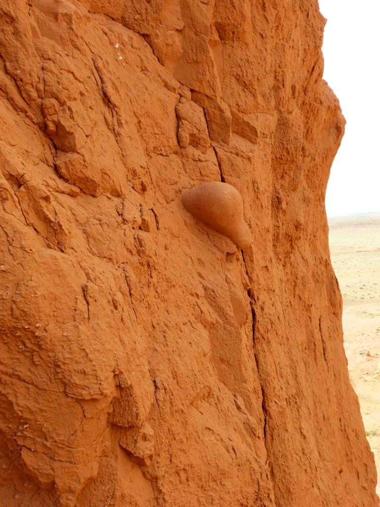 Dinosaur Bones Bayanzag Cliffs