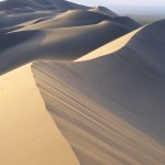 Khongoryn Els dunes Gobi