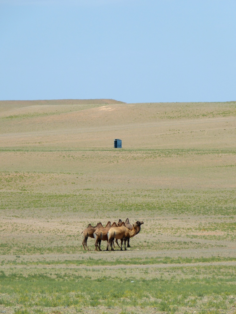 Loo with a view Gobi Desert