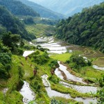 Banaue rice terraces-