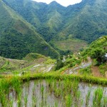 Batad rice terraces-