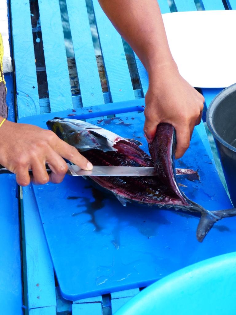 Tuna sashimi-