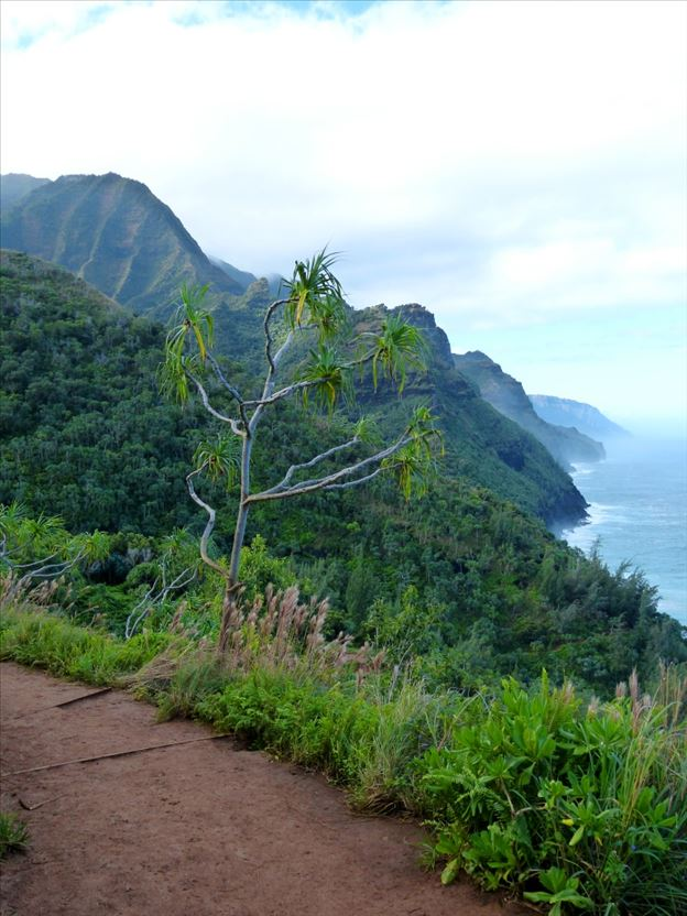 Views Kalalau