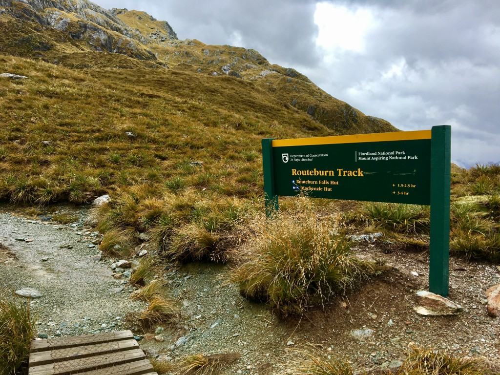Haris Saddle, Routeburn Track