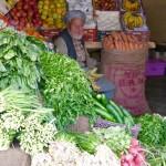 Grocer Bamiyan