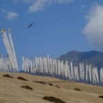 Phobjikha Valley Prayer Flags