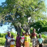 Village kids under the baobab tree