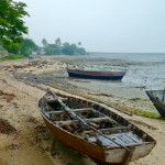 Beached dhows