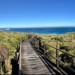 Boardwalk Cape Naturaliste