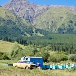 Summer beekeepers Kyrgyzstan
