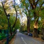 Parks Almaty